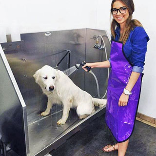 Grooming and pet washes pet food center evansville west solutioingenieria Image collections